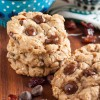 coconut, cranberry, chocolate chip oatmeal cookies